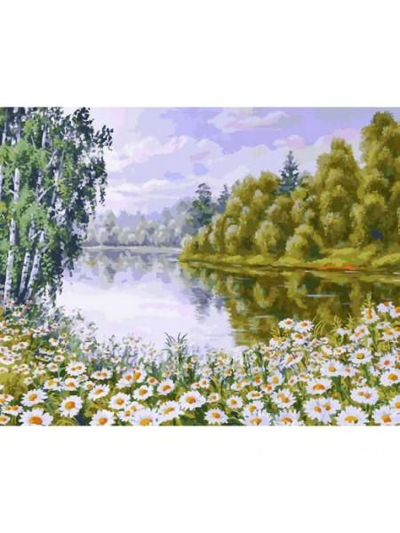 Рисование по номерам (живопись на холсте), В ромашковом краю, 40*50 см.35 цв.