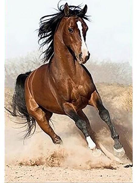 """Алмазная мозаика """"Дикий конь"""", 23 цвета"""