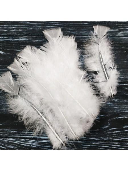 Перья декоративные,цв-белые(026).размер 10-15см,цена за 20 шт
