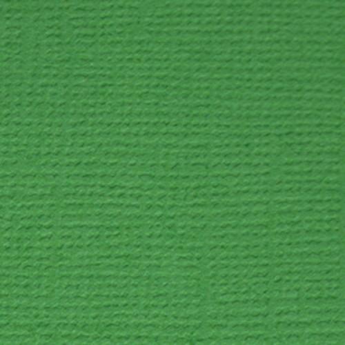 Бумага текстурированная-PST-Лесной папоротник (зелёный),30,5*30,5 см,цена за 1 лист