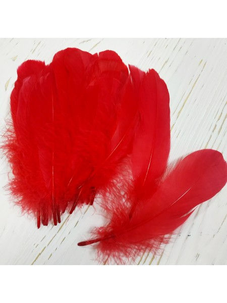 Перья декоративные,цв-красные(028).размер 10-15см,цена за 20 шт