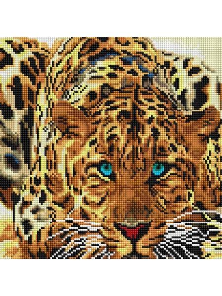 Набор Белоснежка для изготовления картин со стразами на подрамнике-Леопард,30х30см,20 цв.