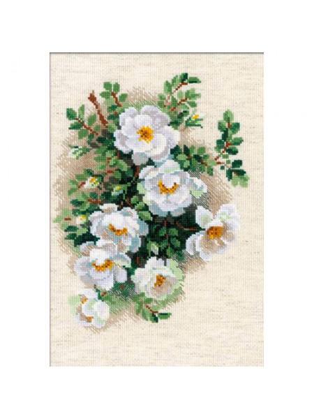 Набор для вышивания Riolis 'Белый шиповник', 21*30 см