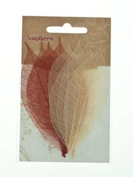 Скелетированные листочки,цв-коричневые оттенки, набор 8 шт