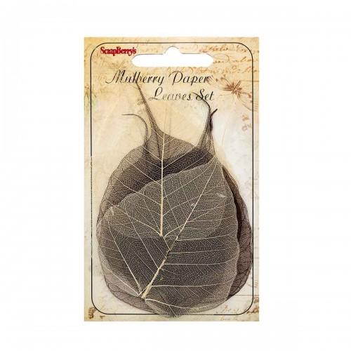 Скелетированные листочки,цв-коричневый, набор 8 шт,