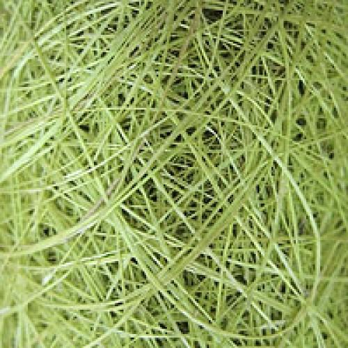 Сизаль,цвет светло-зелёный,40гр