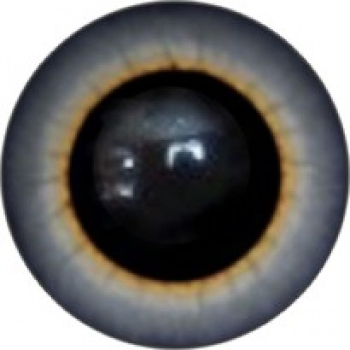 Глазки для игрушек.Пришивные-8мм-№61А,цена за пару