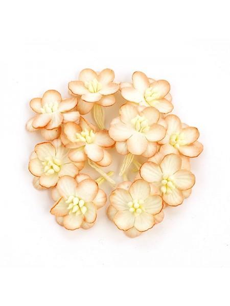 Цветок вишни-персиковый,цена за 1 шт