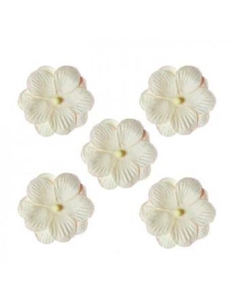 Анютины глазки, набор двойных цветочков 5 штук, белый