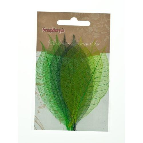 Скелетированные листочки,, набор 8 шт, оттенки зеленого