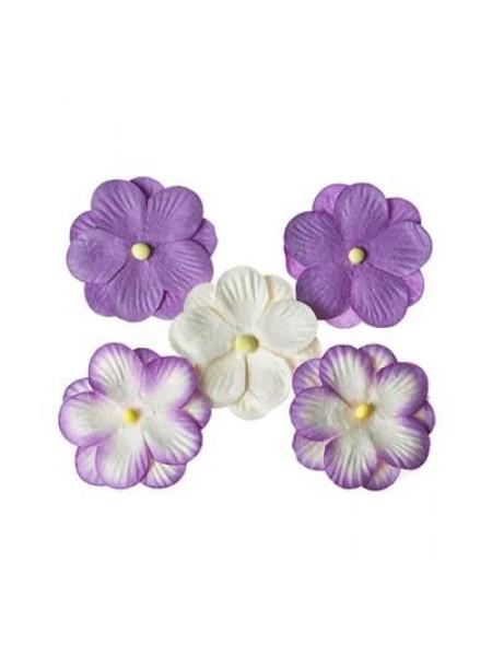 Анютины глазки, набор двойных цветочков 5 штук, фиолетовые