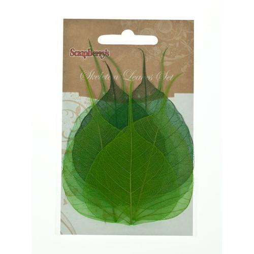 Скелетированные листочки из бананового дерева, зеленый, упак./8 шт.,