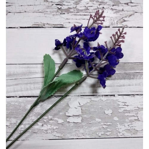 Веточка - Лаванда фиолетовая