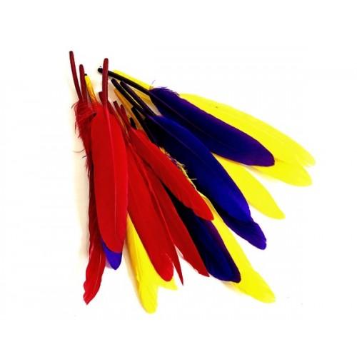 Перья индейские-0983, 10-15см,цена за уп-5,5гр