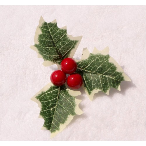 Рождественник с красными ягодками