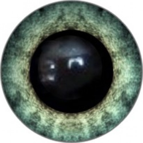 Глазки для игрушек-14мм-№231А,цена за пару