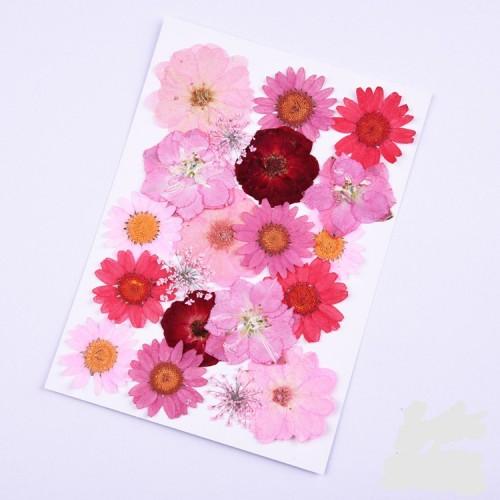 Сухоцветы,микс розовый. Набор номер 3