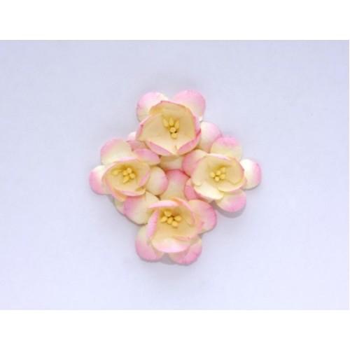 Цветы сакуры,розово-бежевые, набор из 4х штук