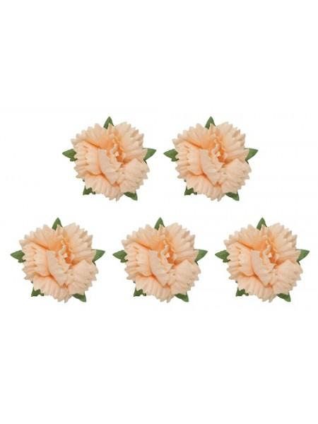 Гвоздики -набор-5 шт. персиковые